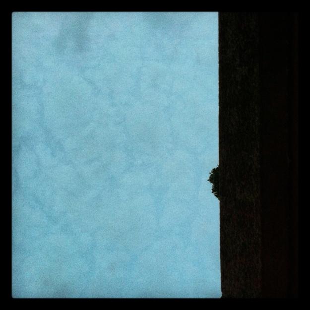 20120621-081936.jpg